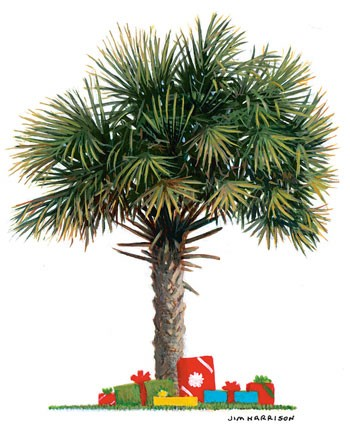 2004 Palmetto Christmas Cards