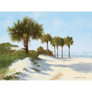 Beach Sand and Palmetto