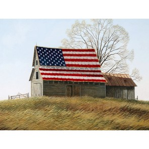 Flag on Barn