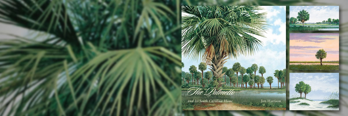 Explore Jim's Palmetto Art
