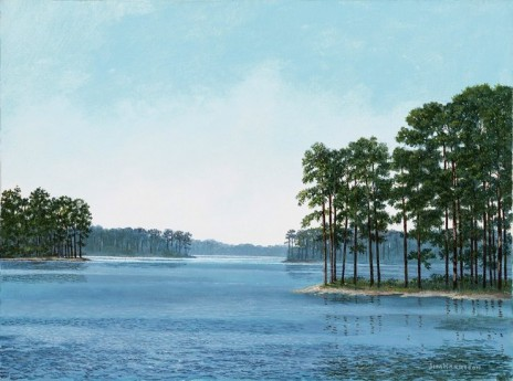 Pine Trees in Lake